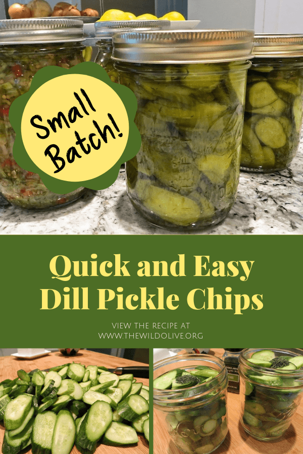 Pinterest Image for Dill Pickle Chips