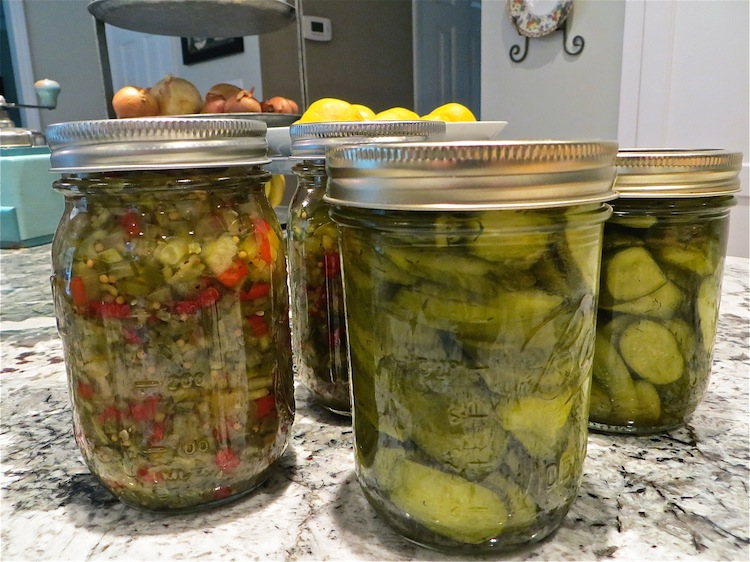 homemade relish and dill pickle chips