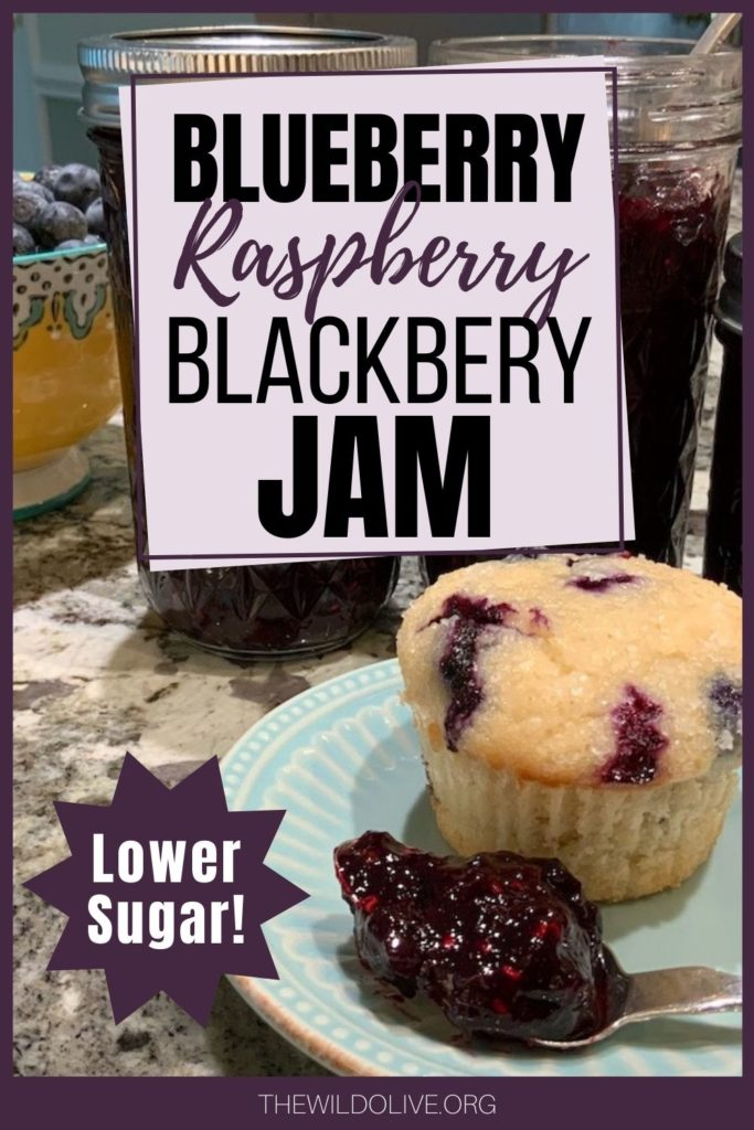 Pinnable image for low sugar Triple Berry Jam